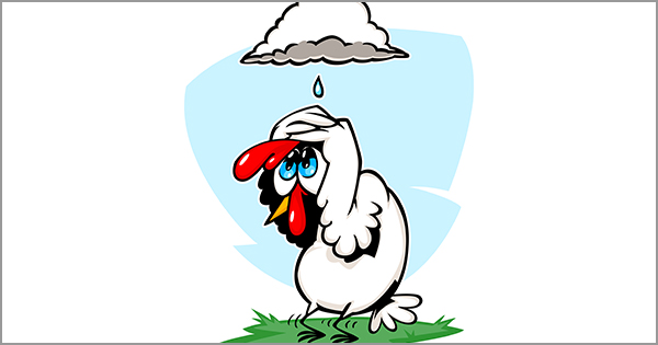Be Quiet Chicken Little! The Sky is Not Falling | Keeping Current Matters